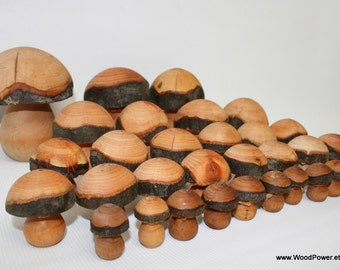 Hand Turned Wooden Mushrooms(5 Sizes Set of 31)