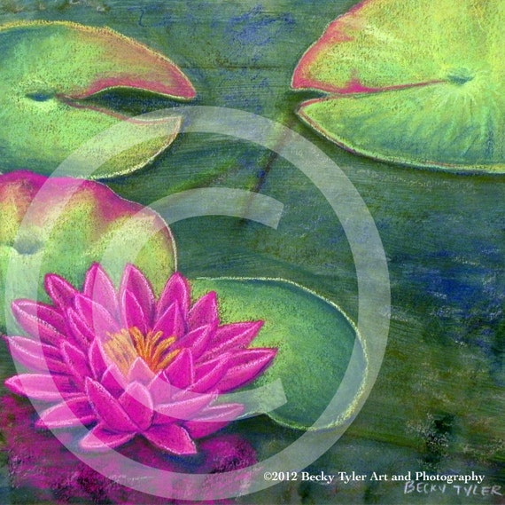 """Fine Art Drawing """"Water Lily"""""""