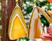 Sliced Golden Sardonyx Earrings - Gold
