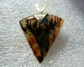 ON HOLD for kcosby1 Woodward Ranch Plume in Silica Agate with Solid 14kt gold Bezel (pendant)