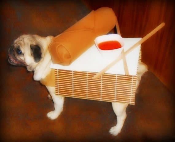 Egg Roll Dog Costume