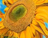 "Sunflower Greeting Card from Original Watercolor, 5x7, ""Girasole"""
