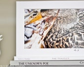 Framed Country Rustic Wall Art of New England Duck Photo AUTISM AWARENESS  5x7 or 8x11