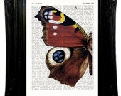 dictionary art  Pavo real butterfly  Art Print 6,69x9,2  Pavo real butterfly Print on upcycled vintage dictionary page