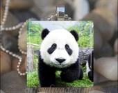 BABY PANDA BEAR Cute Animal Bear Glass Tile Pendant Necklace Keyring