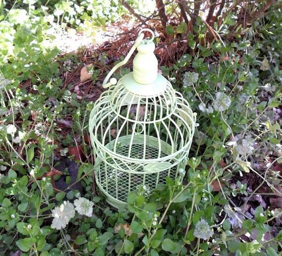 Apple Green Birdcage