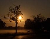 greetings.  landscape, rural, sunrise, warm, home decor