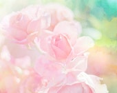 Pink Roses photo Pastel flower Digital Download Nursery Art Girls Room painterly flowers pastel wall art decor