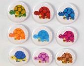 "Rainbow of Turtles Magnet Set - 9 magnets - 1.5"""