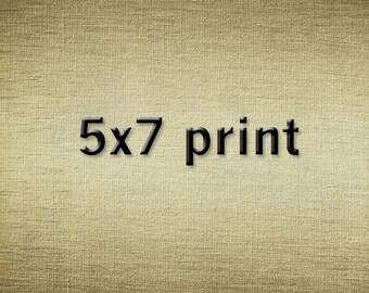 5x7 photograph