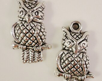 Silver Owl Charms 22x12mm Antique Silver Tone Metal Bird Charm Pendant Jewelry Making Jewelry Findings 10pcs
