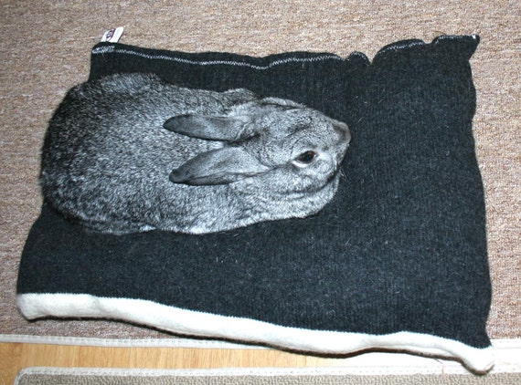 Bunny Hugger top by side bunny bed for a medium sized rabbit