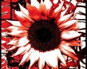 Sunflower - Digital Art - Downloadable Poster 35cm x 50cm