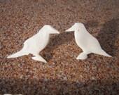 White post raven earrings