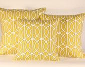 Robert Allen Designer Pillow set 16x16, 18x18, and 20x20