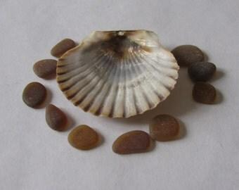 small brown genuine sea glass  beach glass