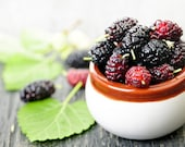 1 oz. Mulberry Fragrance Oil