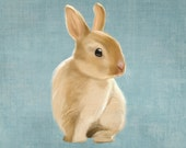 A delightful small rabbit on a rustic light blue background (art print 8x8 on giclée archival paper) - SparaFuori