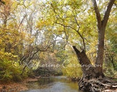 Big Chico Creek - 8x10 Color Print Nature Autumn Fine Art Photography - Other Sizes Avalable