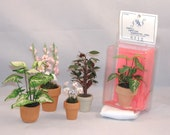 Collection of Miniature Potted Plants - Decorations for Your Dollhouse - De-Stash