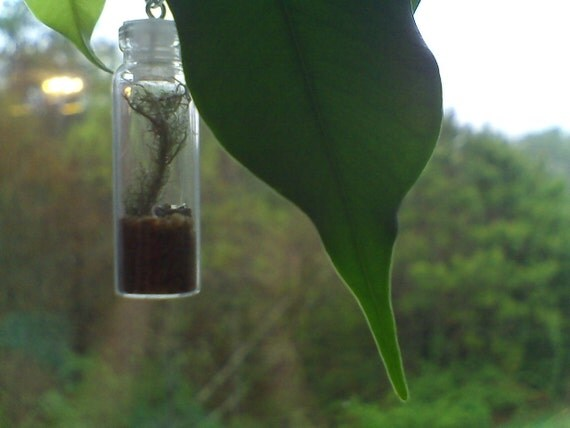 Tiny Nature Bottle Necklace with Leather Cord