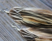Handmade Feather Earring - Golden Badger Rooster Feathers & Jungle Cock w/ Antique Silver Findings