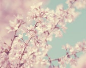Spring Cherry Blossom Pale Pink Vintage Floral Photo French Decor Photography