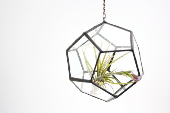 Small Dodecahedron // Hanging Geometric Terrarium // recycled glass - Air plants - small succulents - window garden