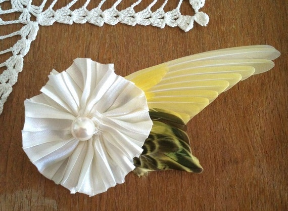 Taxidermy Parakeet Wing Brooch