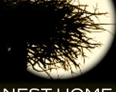 NEST HOME DECOR   Only the Finest Antique Furniture, Antique Stained Glass, Gilded Frames, Antique Architectural Elements, Fireplace Mantles