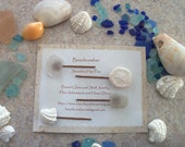 Beachcomber Shoreline Hair Pins - White Sea Glass, Shell and Sand Dollar - Two Pair