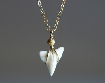 Mano Jr. necklace - tiny gold shark tooth necklace, delicate 14kt gold filled necklace, dainty layering modern necklace, maui, hawaii