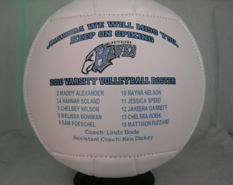 """Small  6"""" Photo Volleyball - Create YOUR personal fan ball"""
