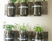 Mason Jar Planter or Office Organizer