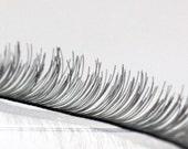 G-001  / Doll Eyelashes / 8 mm X 200 mm / Black