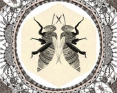 Illustrated Artist Book - The Plight of the Honey Bee