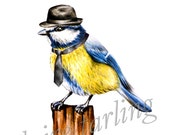 Blue Tit wearing Tie and Trilby Hat Art Print - 8x10