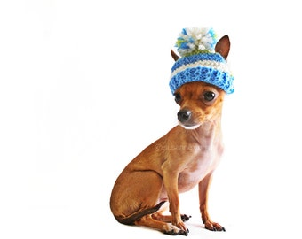 Chihuahua, pet photography, knited, hat, dog, animal, pet, 8x10, home decor, fine art photography