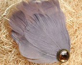 Feather Headband/clip