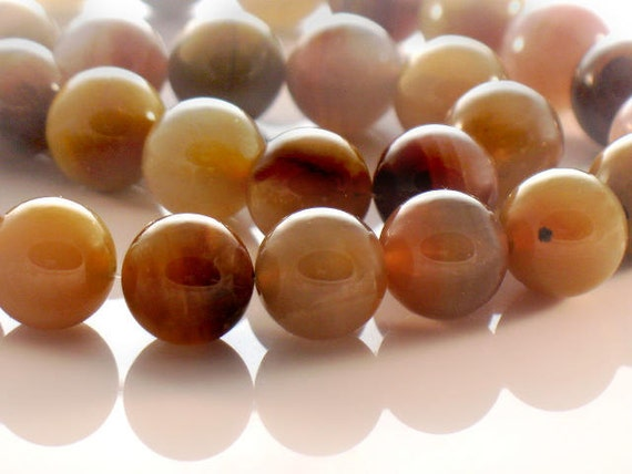 Petrified Wood 10mm Smooth Round Beads Natural and Organic Transformation AAA Quality