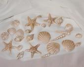 Gumpaste Sea Shells - 25 count