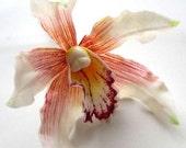 8 White Hawaiian Cymbidium Heads Artificial Silk Flower Latex Coated - 5 inches - Wholesale Lot - for Wedding Work, Make Hair clips
