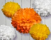 Tissue Paper Pom Poms Set of 30