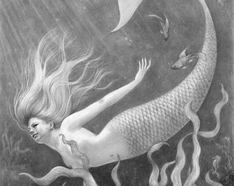 Mermaid - 11x14 original pencil drawing - Free shipping