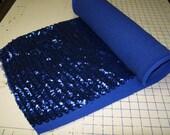 Stretch Sequin Fabric