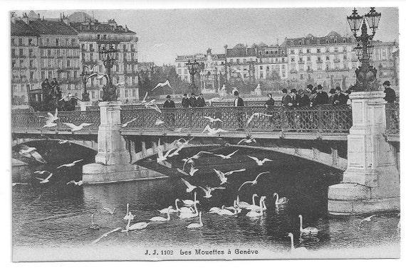 SALE 1910s Vintage Postcard: J. J. 1102 Les Mouettes a Geneve