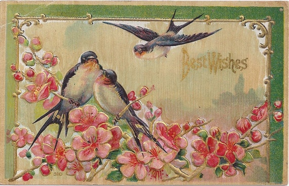 1910s Vintage Postcard: Best Wishes, Blue Birds, Flowers, used Valentine's Day 1912