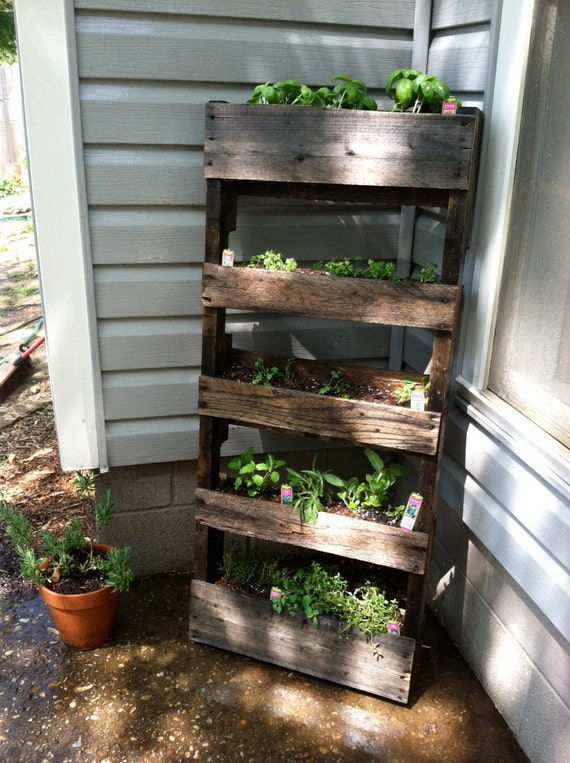 Wood pallet herb garden - Paletten wandregal ...