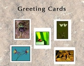 Greeting Cards - Set of Any 3 Images - Nature