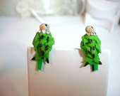 Green Tropical Parrot Earring - Screwbacks -  E458a-04081200